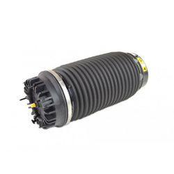 REAR AIR SPRING DODGE RAM 1500 15-20